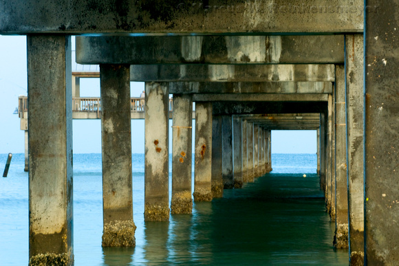 Weathered pilings and support structure of Pier 60 in Clearwater, Florida.