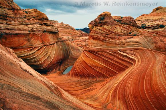The Wave, a wondrous geologic formation at Paria Canyon, Vermilion Cliffs, Arizona and Utah border.