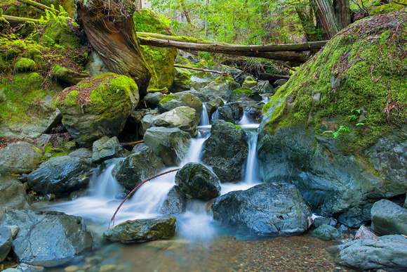 Time exposure photograph of cascading creek along the Bootjack Trail, Muir Woods, California.