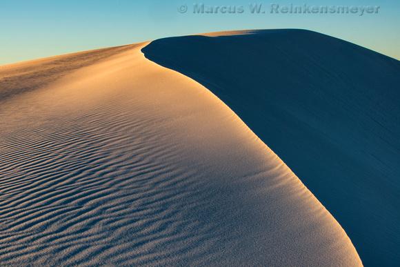 White Sands Golden Dune Crest