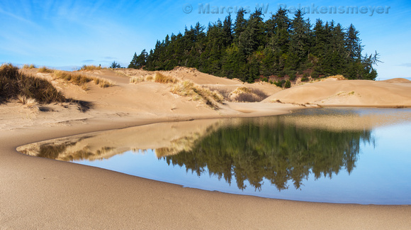 Oasis,  Oregon Dunes National Recreation Area,  John Dellenback Dunes Trail,  4 pano, Oregon