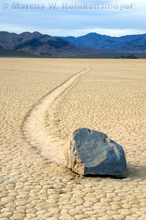 Moving bolder leaves a distinctive track at the Race Track, Death Valley National Park, California.