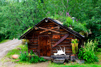 Annual flowers abound at the Kantishna Recorder's Office, a rustic log cabin located at Denali National Park and Preserve,  Alaska.