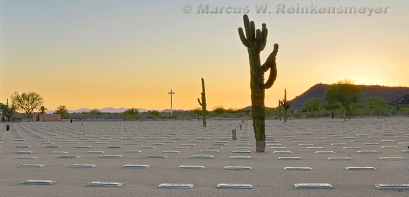 In memory of our war veterans, a cross and Saguaro cactus in sunset light at National Memorial Cemetery, Phoenix, Arizona.