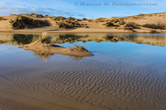 Oasis,  Oregon Dunes National Recreation Area,  John Dellenback Dunes Trail, 3, Oregon