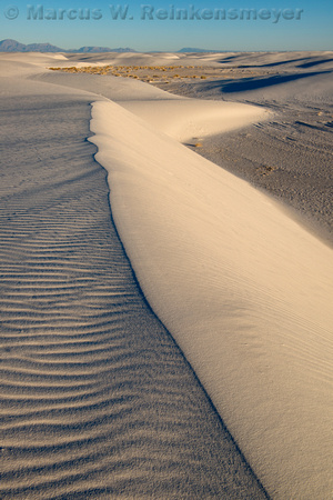 White Sands Ridge Line 1