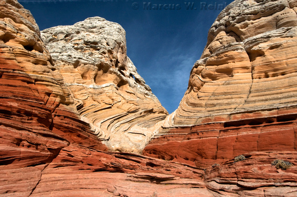 Rock outcroppings laced with mineral deposits at White Pocket,  Paria Canyon - Vermilion Cliffs Wilderness Area, Arizona and Utah Border.