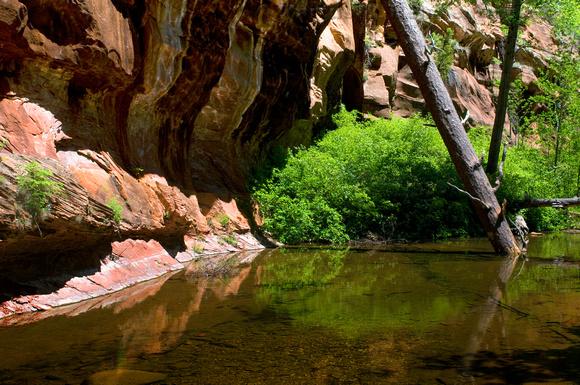 West Fork Trail, Oak Creek Canyon, Arizona.