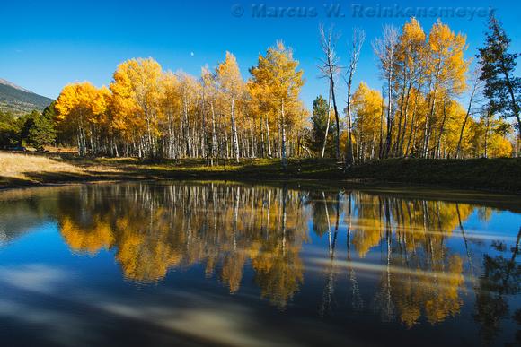 Autumn Reflections web
