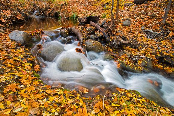 West Clear Creek, Arizona